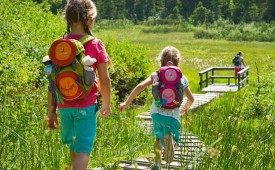 Hiking trails for families